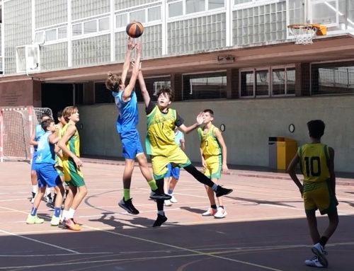 Actualitat de la secció de bàsquet